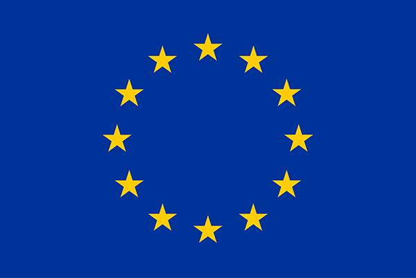 Berufsausübung innerhalb der EU