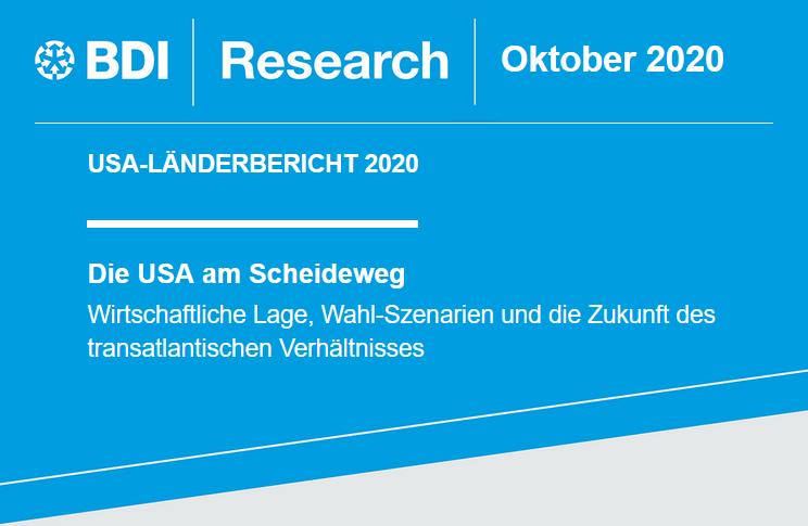 BDI-Zukunftsanalyse USA